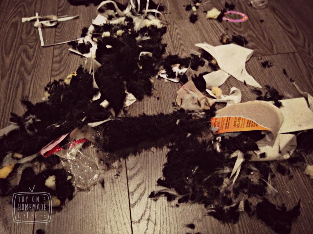 Furry Mess